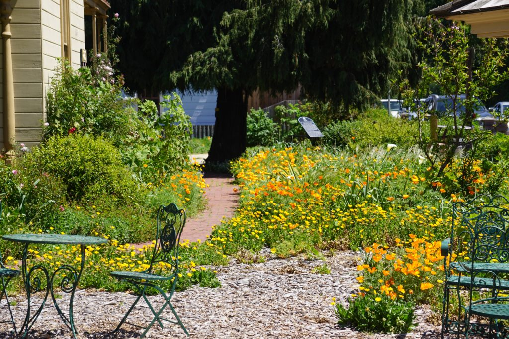 Cambria Historical Society Gardens