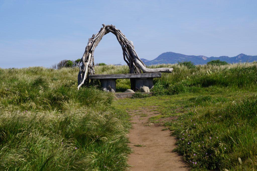 Ocean Ridge Trail Fiscalini Ranch Preserve Cambria