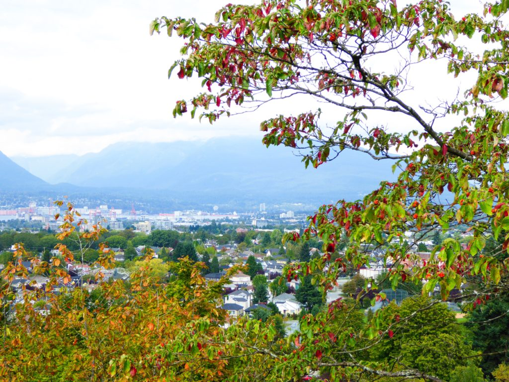 Views of the City from Queen Elizabeth Park in Vancouver
