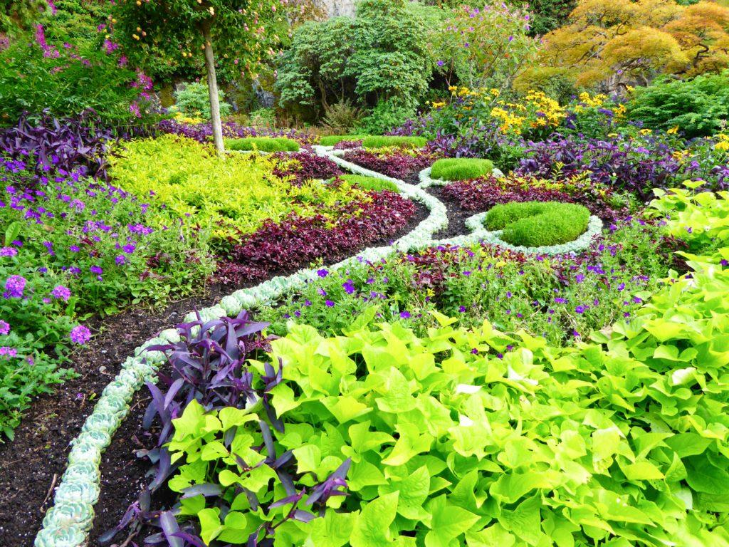 Plant Display at Queen Elizabeth Park in Vancouver