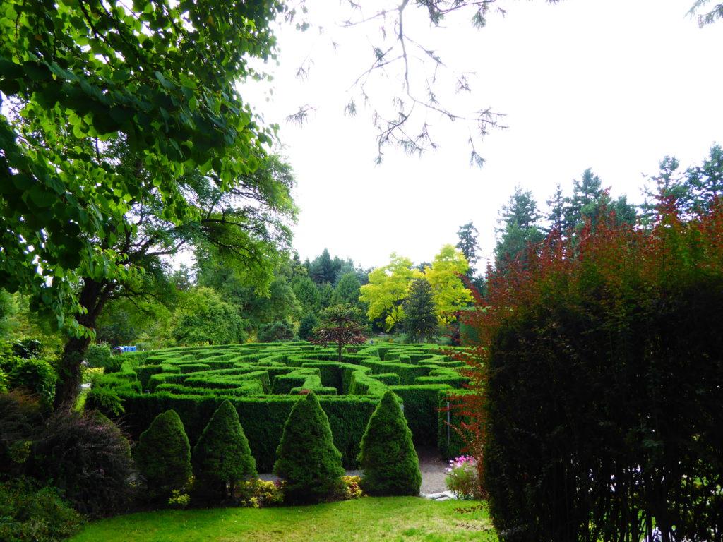 Elizabethan Maze VanDusen Botanical Gardens Vancouver