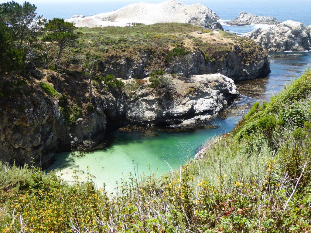 China Cove Point Lobos State Park Carmel