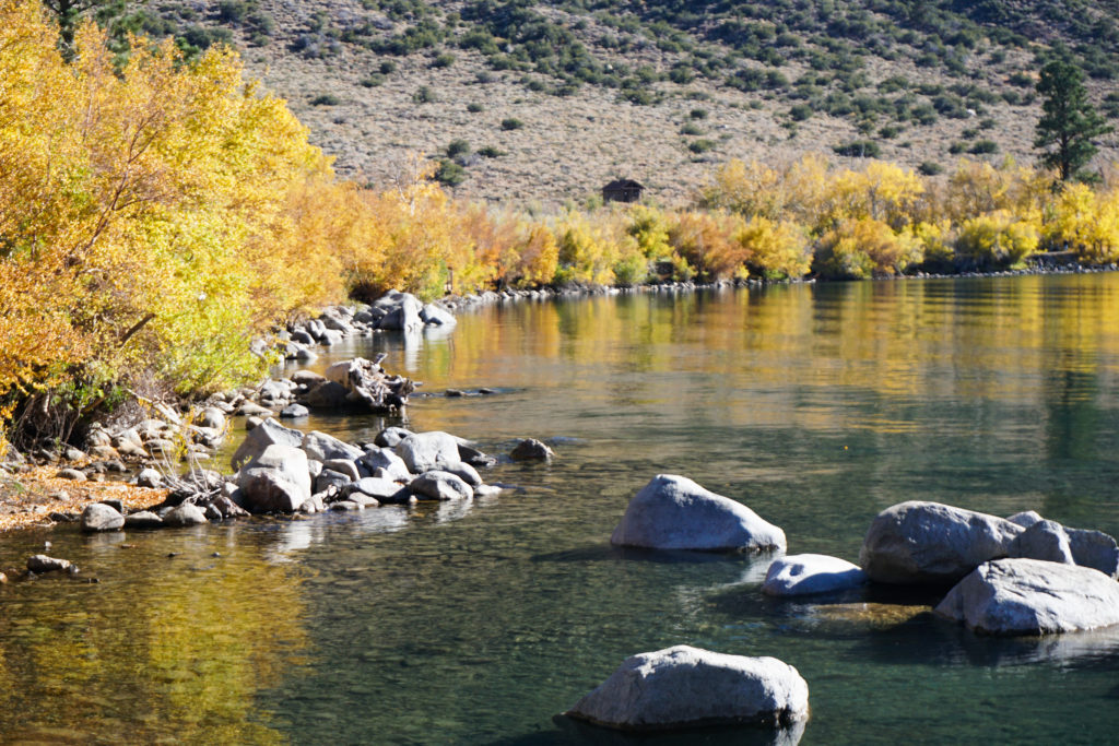 Fall Colors, Convict Lake, Eastern Sierra