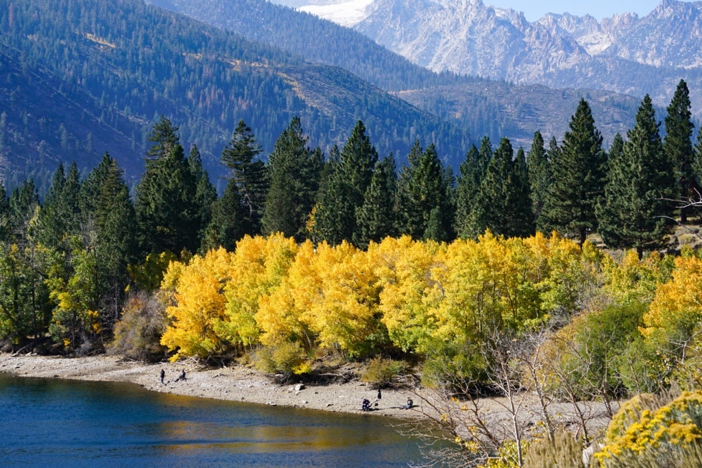 Anglers enjoying the fall morning at Twin Lakes in the Eastern Sierra