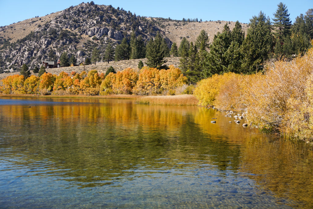 Reflections at Gull Lake in the Eastern Sierra
