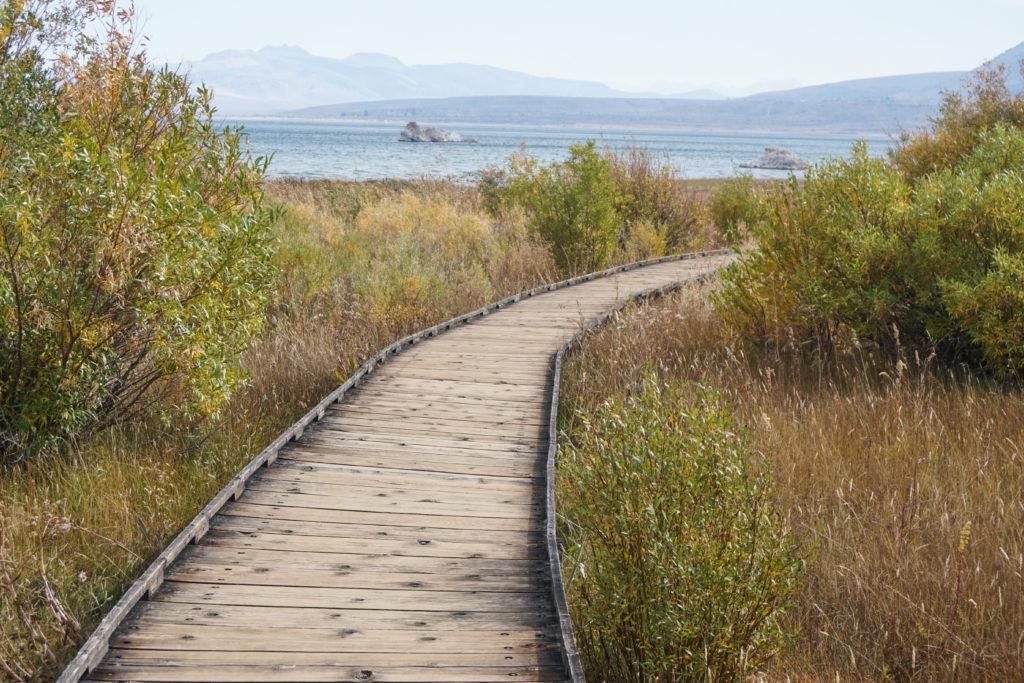 The boardwalk trail at Mono Lake