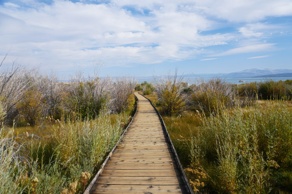 The boardwalk trail at Mono Lake