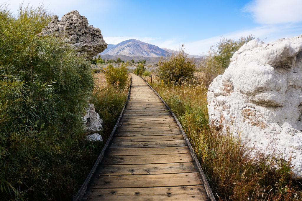 Walking the boardwalk trail at Mono Lake