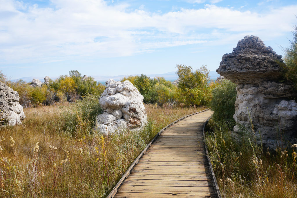 Tufa towers along the boardwalk trail at Mono Lake