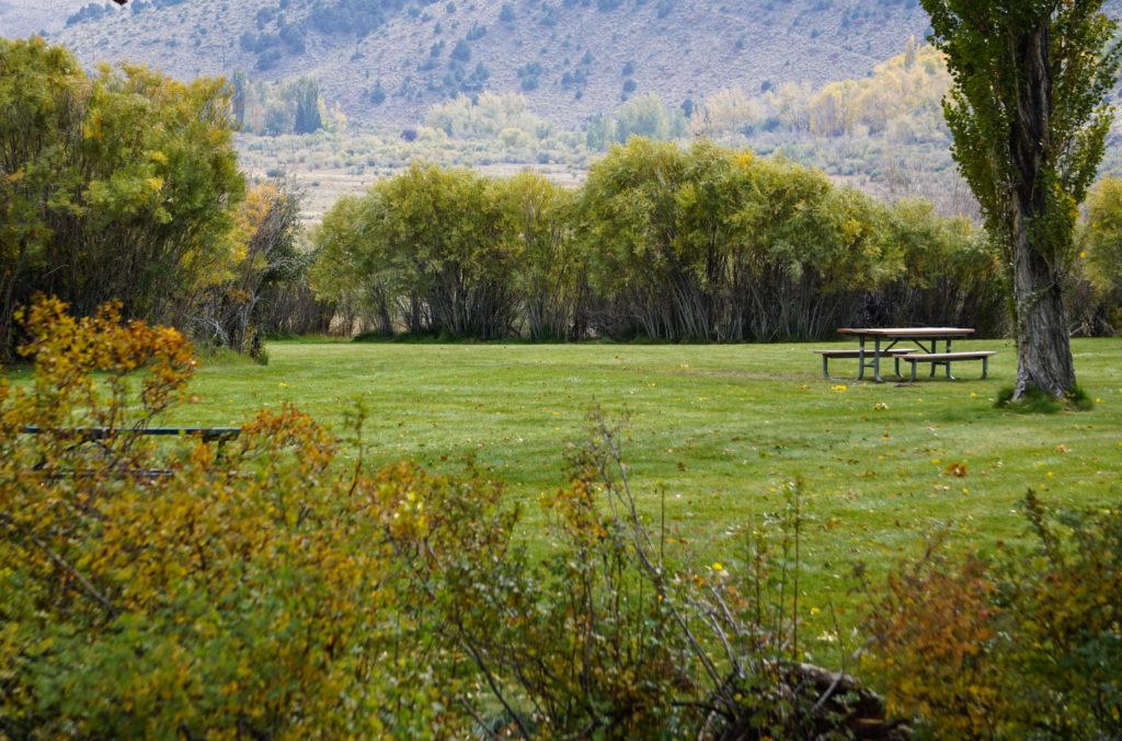 County Park at Mono Lake