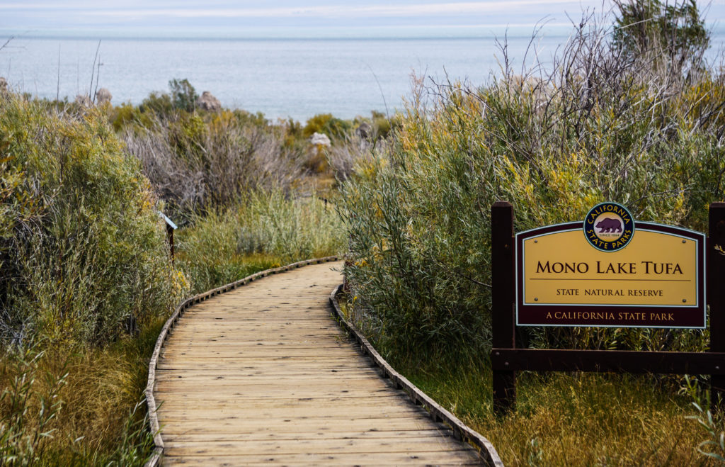 The Boardwalk Trail at Mono Lake in the Eastern Sierra