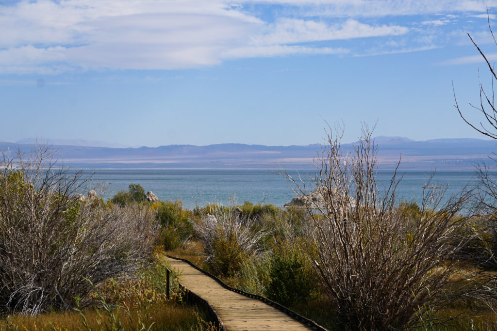 View of Mono Lake from the boardwalk trail