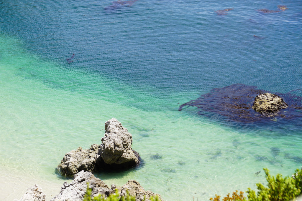 Gibson Beach Point Lobos State Reserve