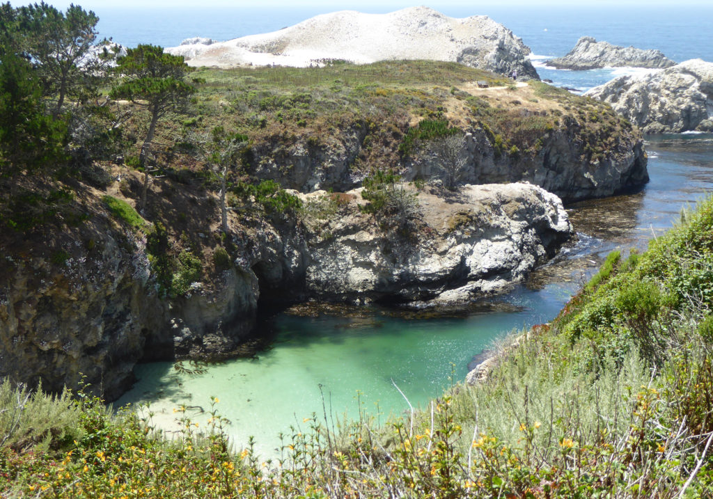 China Cove Point Lobos State Reserve