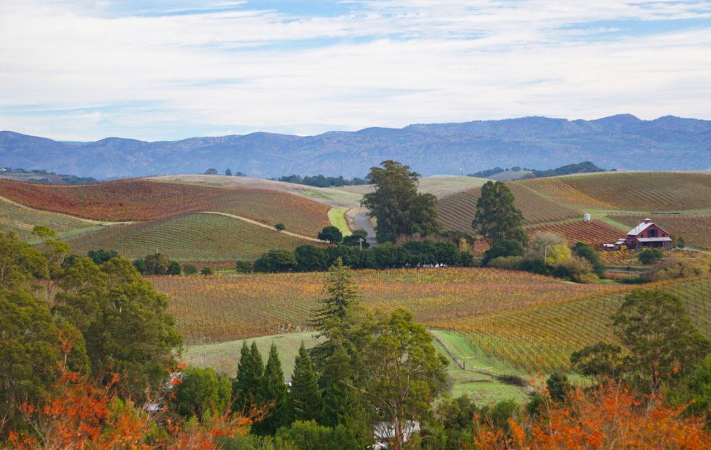 View from Artesa Winery Napa Valley California