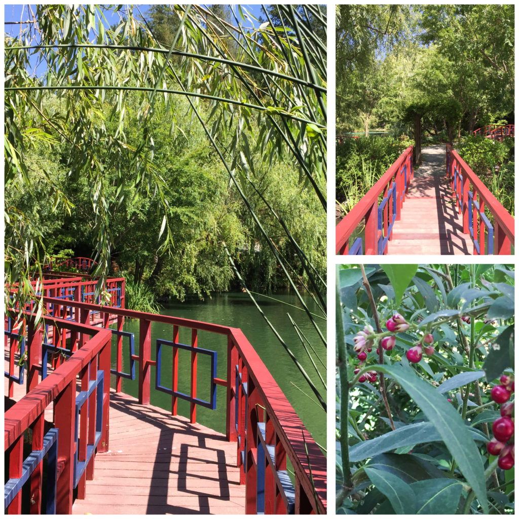 Bridges and greenery in the Chinese Garden at Chateau Montelena Napa Valey California