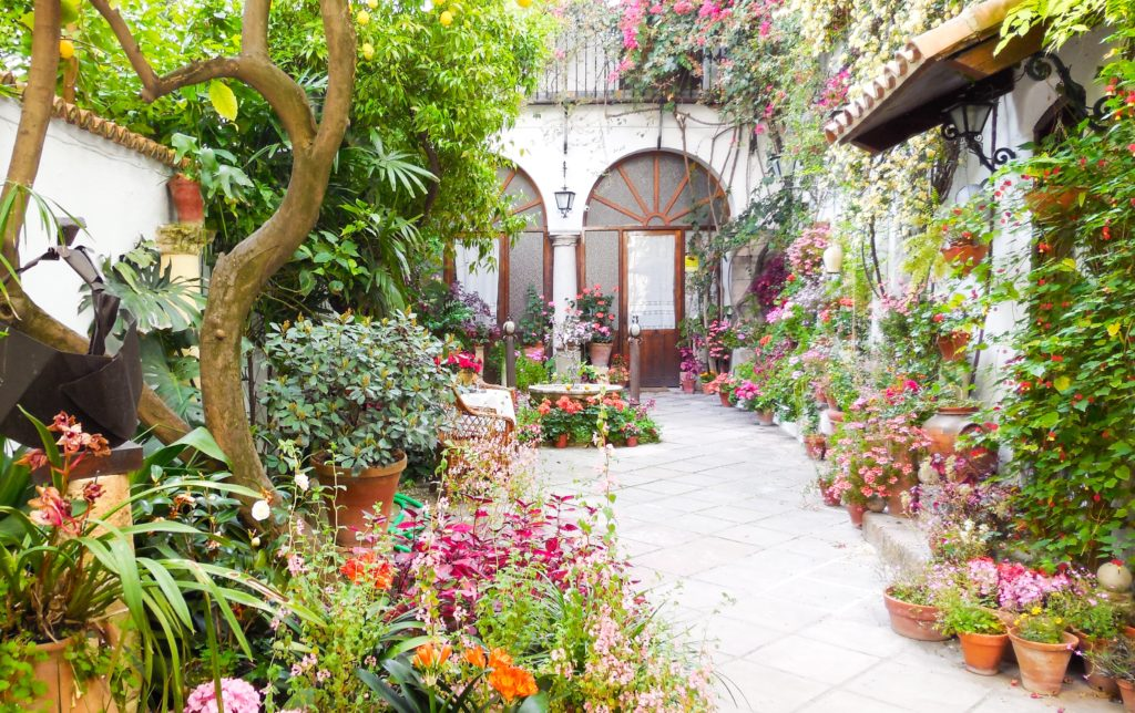 A Patio in Cordoba, Spain