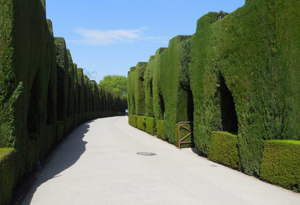 Topiary path at the Alhambra in Granada Spain