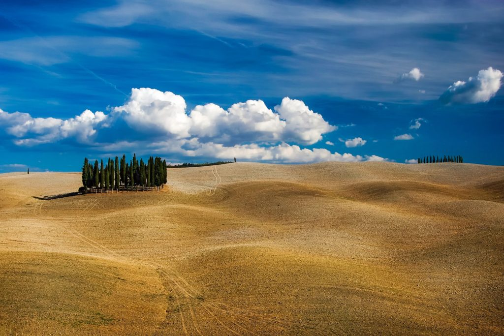 The Cypresses of San Quirico d'Orcia in Tuscany, Italy