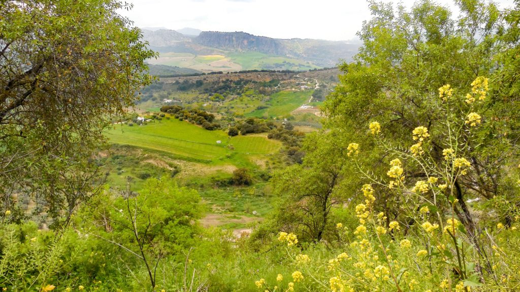 View of the countryside from Ronda, Spain