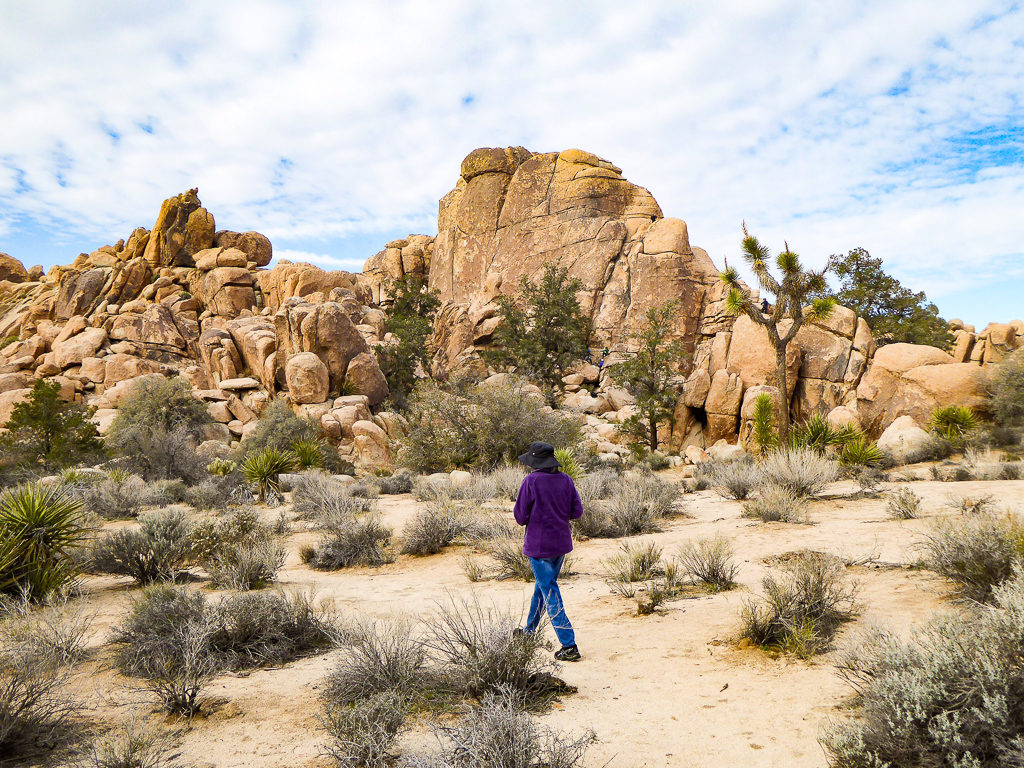 Boulder formations in Joshua Tree National Park in Southern California, USA