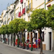 Two Weeks in Andalusia: The Ultimate Southern Spain Itinerary!