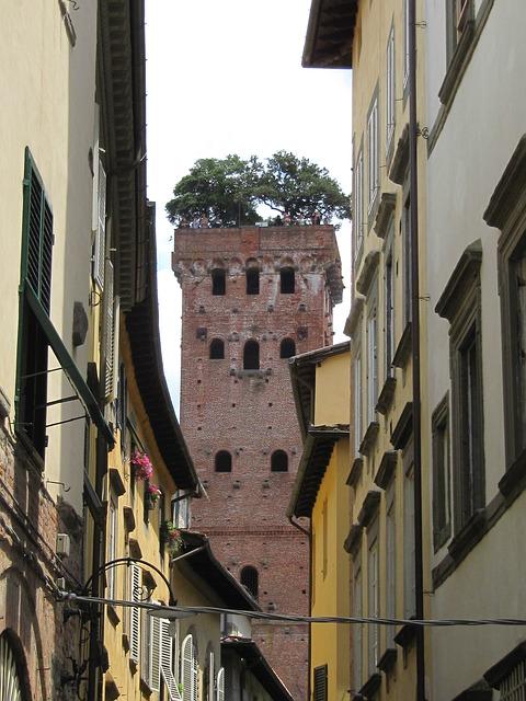 Torre Guinigi Lucca Italy
