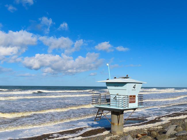 Torrey Pines Beach San Diego California