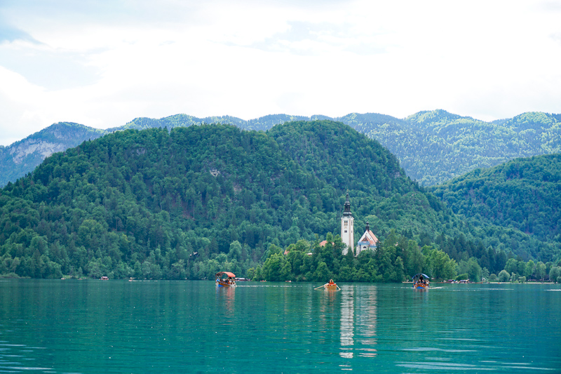 Rowboat at Lake Bled making its sway to Bled Island, along with some Pletna boats.