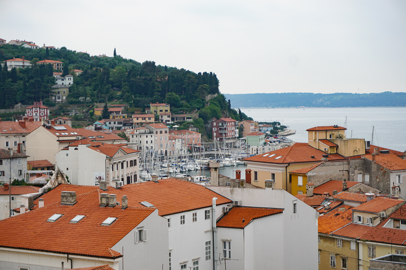 View of Piran's Marina from the Church of St. George Piran Slovenia