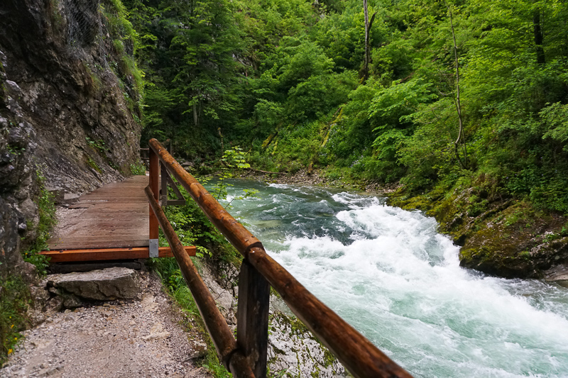 A wet boardwalk at tVintgar Gorge in Slovenia