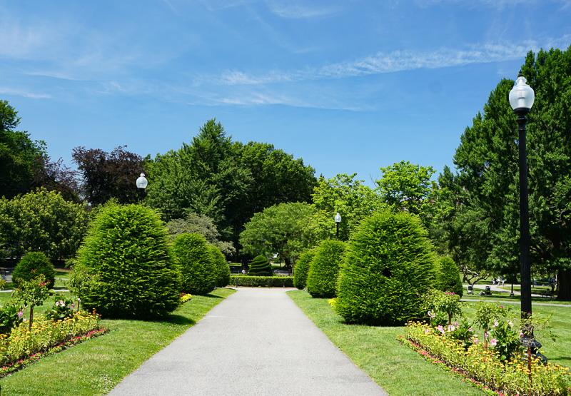 Boston Public Garden pathway
