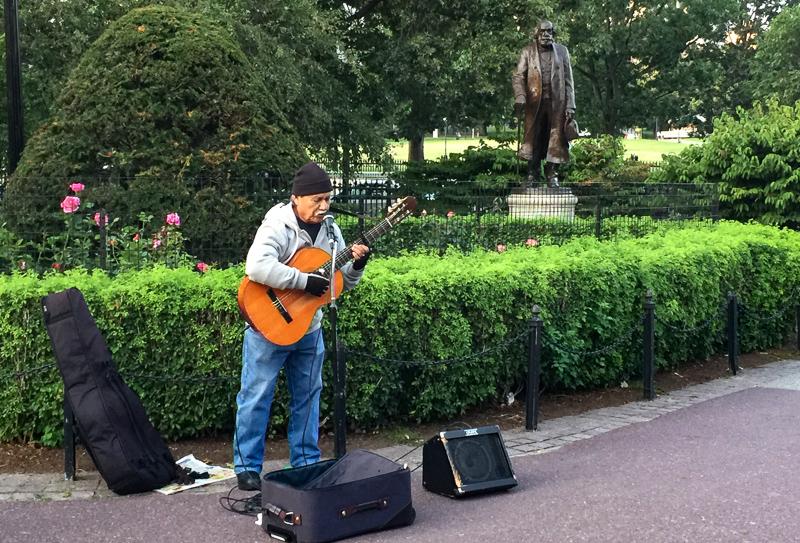 Busker at Boston Public Garden