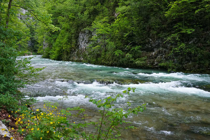 Radovna River Vintgar Gorge Slovenia