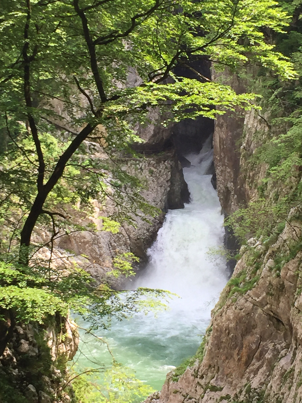 Reka River Slovenia