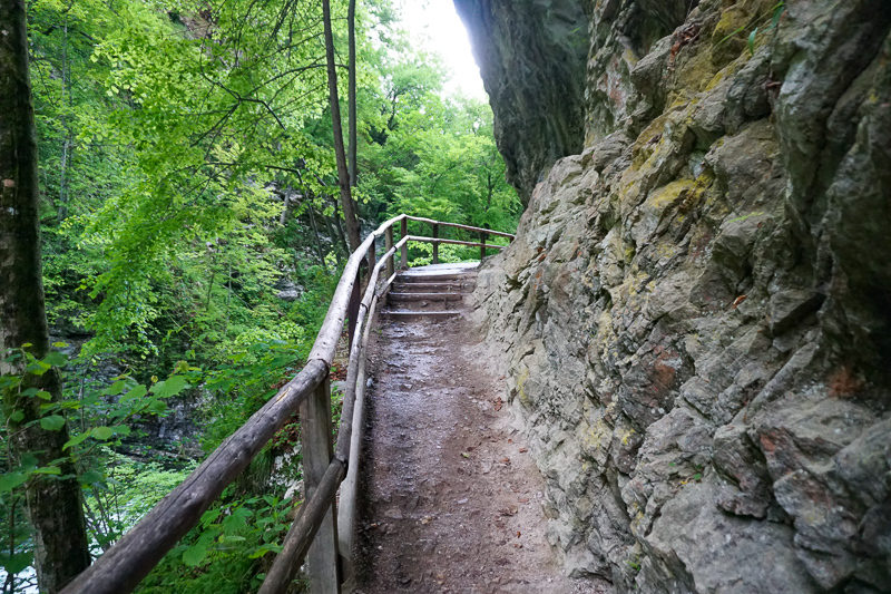 Steps on Vintgar Gorge Trail