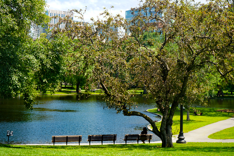 The Boston Public Garden is a great place to relax!