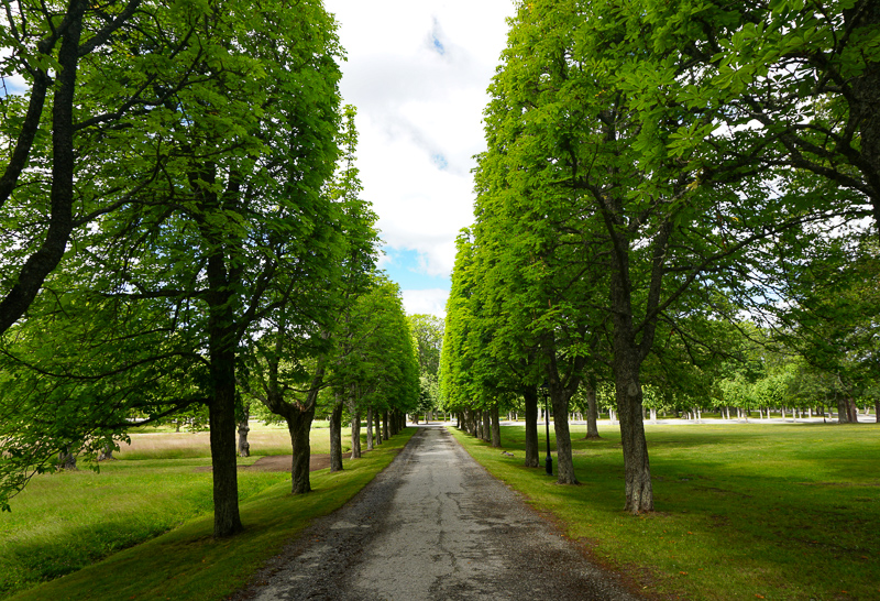 Grounds of Drottningholm Palace in Sweden