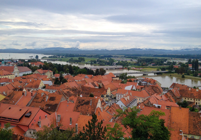 The red roofs of Ptuj in Slovenia