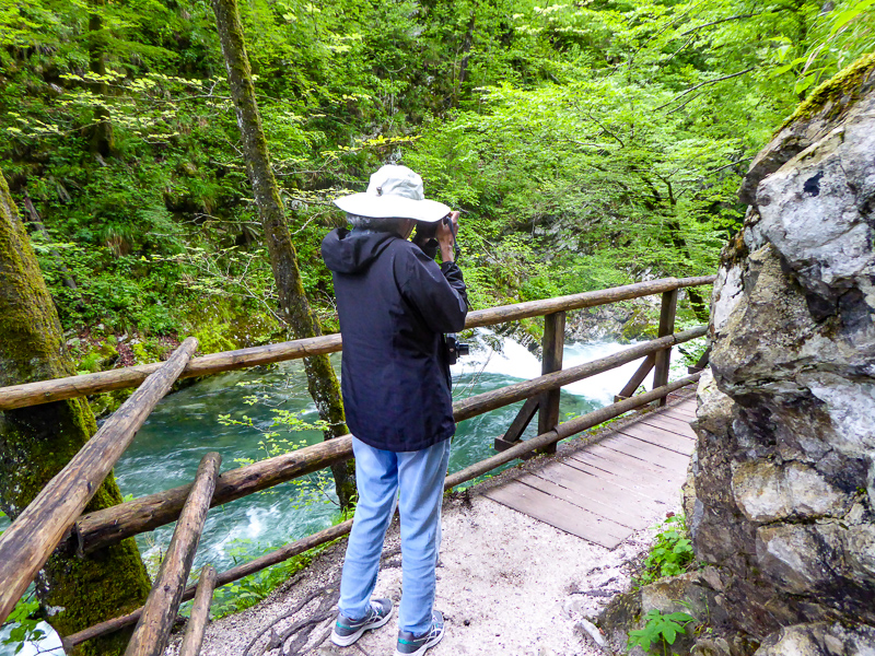 Trail at Vintgar Gorge in Slovenia