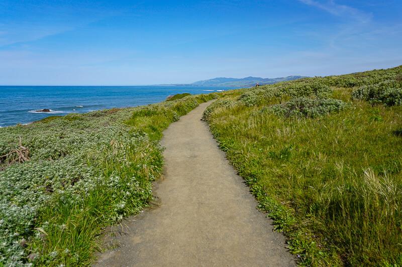 Bluff Trail Fiscalini Preserve Cambria California USA