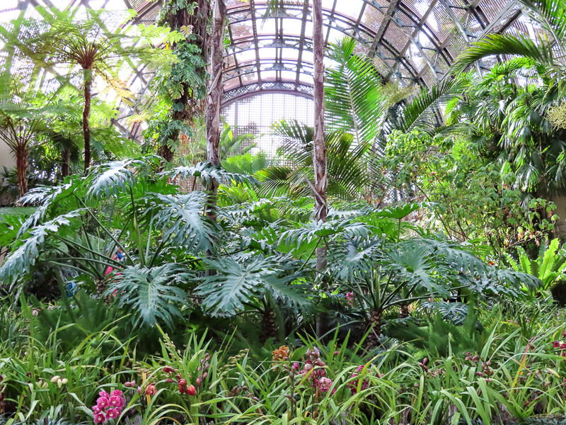 Botanical Building Interior Balboa Park san Diego California USA