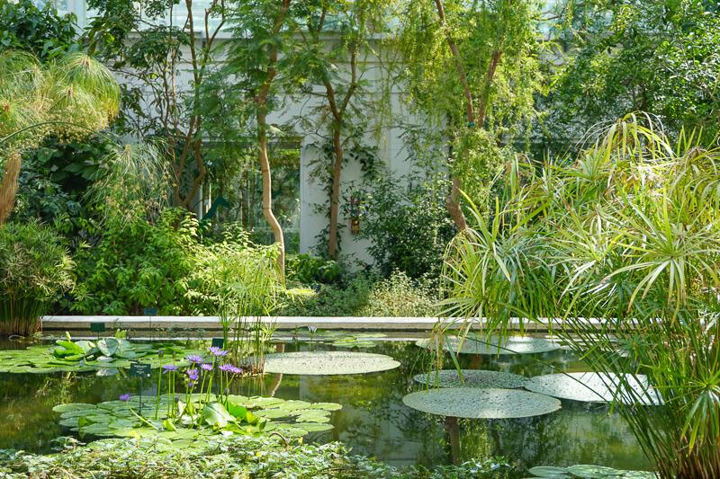 Botanical Garden Padua Italy