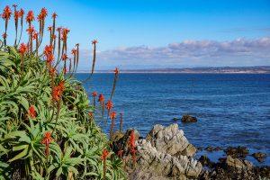 The Best California Weekend Getaways