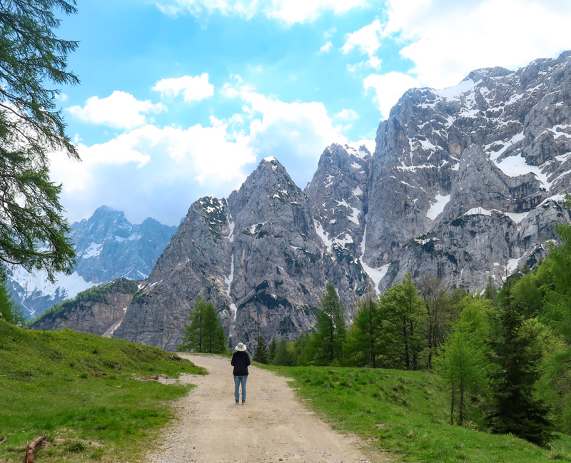 A trail in the Julian Alps in Slovenia