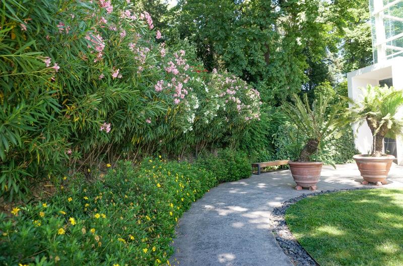 Path to Greenhouse Padua Botanical Garden