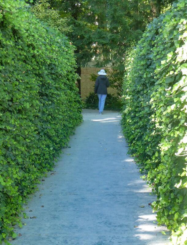 Orto Botanico Padua Italy