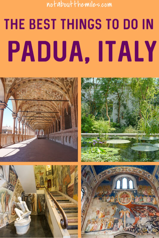 Padua is an easy day trip from Venice or Verona. Discover the best things to do in historic Padua, from the Scrovegni Chapel to the UNESCO-designated Botanical Garden.