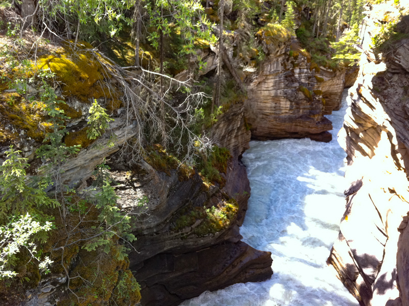 Athabasca Falls in Jasper NP Canada