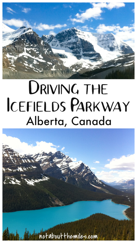 Discover the best things to see and do along the Stunning Icefields Parkway in Alberta, Canada! The Canadian Rockies road connects Lake Louise and Jasper and features beautiful natural scenery!